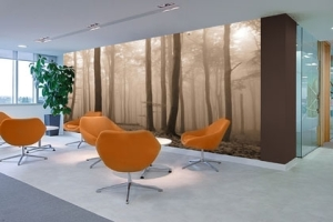 "Photo mural wallpaper. ""Misty Trees Sepia"""