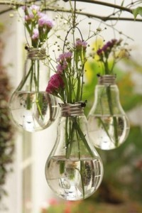 Lightbulbs used as vases